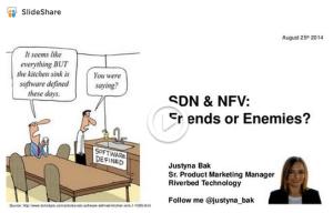 SDN NFV